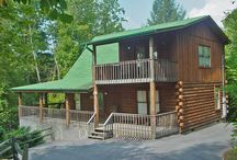 Pet-Friendly Cabin Rentals / Just like you and your family or group are ready to get away to the Smoky Mountains for a couple of days, we can guarantee that your dog could use a vacation too.