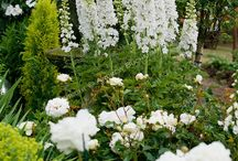pretty gardens / gardens with lots of beautiful flower beds
