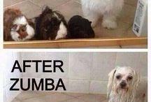 Zumba Mood