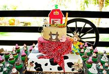 Farm Party Ideas  / by Shindigz