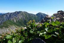 悪沢岳(荒川岳/荒川三山)登山 / 悪沢岳(荒川岳/荒川三山)の絶景ポイント 南アルプス登山ルートガイド。Japan Alps mountain climbing route guide