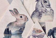 Animals in design