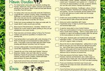 Brent's board / Garden tips