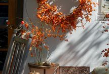 Autumn / Fall & Halloween in the Home