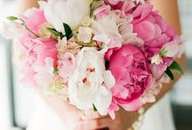 Wedding Flowers / by Sally Johnsen