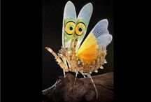 The world of insects / Anything and everything about teeny creatures