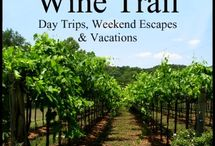 Wine Tasting and Winerys / Places we have been / by Carol Geist Novak