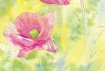 watercolour illustration / Watercolour