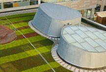 Live Roof / LiveRoof is the first prevegetated modular green roof system developed by growers and specifically designed to grow plants on a rooftop environment
