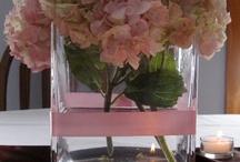 Hortenzie a kvety