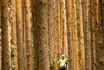 V Concurso de Fotografía Medioambiental / Ambientum.com organiza su V edición del Concurso de fotografía medioambiental.  La temática del concurso versará sobre el medio ambiente: paisajes, flora, fauna, agua, residuos, educación ambiental, conservación del medio ambiente... Las instantáneas pueden mostrar lugares y elementos bellos, curiosos o incluso degradados.   Todo encaminado a disfrutar de dos pasiones en una: el Medio Ambiente y la fotografía.   ¡Anímate y participa!
