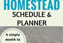 Homestead/Lifestyle Block