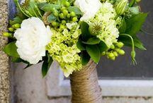 yugo y flores