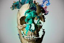 skull / I love skull ! it's wonderful helmet of protection for thought !