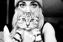 tumblr gatos