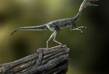 FMP - Compsognathus