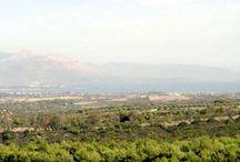 Natural, Health and Calm near the island of Evia/Greece