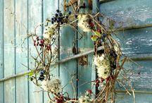 plants diy