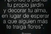 Fraces