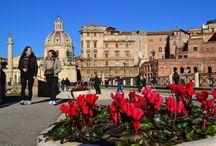 Италия / Фотоотчеты