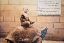 Riding the Tortoise at Reptile Gardens / by Rapid City Public Libraries