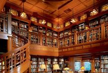 Interiors - Home - Libraries and Shelving