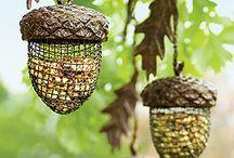 BIRDHOUSE / casette per uccellini da mettere in giardino