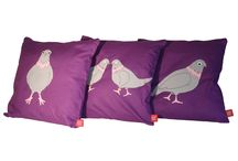 """Pigeon pop / A range your customers will go """"coo-coo"""" for!"""