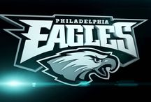 Philadelphia Eagles by Ashley Mossaro / Philadelphia Eagles are my home town team and I go and watch them play any chance I get.