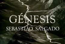 Génesis. Sebastião Salgado / L'exposició GÉNESIS és el resultat d'una èpica expedició de vuit anys per redescobrir muntanyes , deserts , oceans , animals i pobles que han eludit l'empremta de la societat moderna : la terra i la vida d'un planeta encara verge . « Al voltant del 46% de la Terra roman en l'estat en què es trobava en l'època del Gènesi -ens recorda Salgado- . Hem de conservar l'existent . »