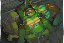 Teenage mutant ninja turtles (the ships)