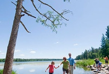 State Parks / by Voyageurs National Park Association