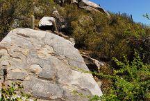 Valle de Chalinga: hogar de comunidades prehispánicas