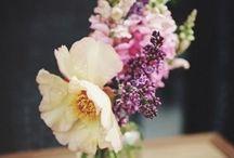 16 - All about flowerpower. / #blumenliebe