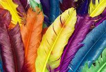 new colours just arrived !!!! / Νέα, Μοντέρνα,Χρώματα,  http://medichic.gr/