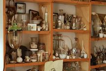 Collections and displays / Botanic, animal and mineral...
