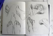 Animation Reference: Anatomy / by Stephanie Tse