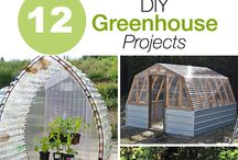 Self-made Greenhouse / Information and Inspiration for your own self-made greenhouse.