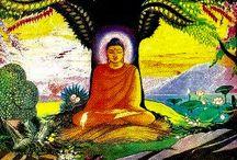 A Buddha élete (The Buddha's life)