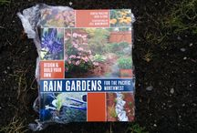 Rain Gardens in the Pacific Northwest