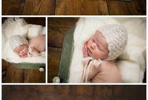 Newborn Photography / by Pamela Tuckey