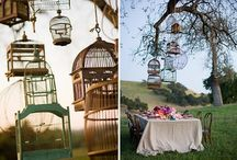Birdcages and Birdhouses