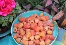 Beautiful Fruits & Vegetables