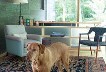 Four legs in interiors