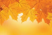 Autumn Fall Facebook Covers / Autumn and fall facebook covers lots of foliage and pumpkins.