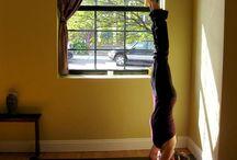 Yoga / Yogi