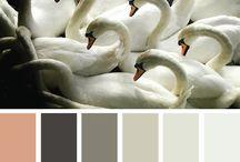 escala de colores