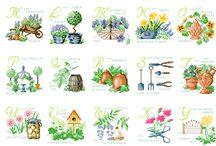 Abec.-zahrada,kytičky