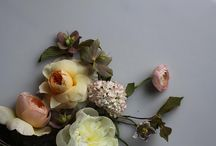 Flowers / by Caroline Booth