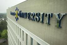 Universities / The chosen universities